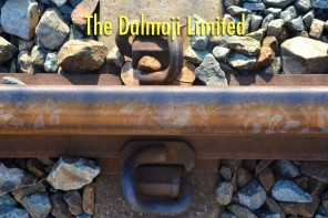 The Dalmaji Limited